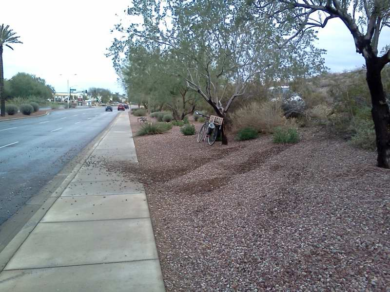 rayRoadRunoff.JPG - I found this car abandoned in the bushes. Had run off Ray Road near 44th St, Phx, crossed the sidewalk and landed in the bushes. 11/13/2011 (presumably in the early morning hours)